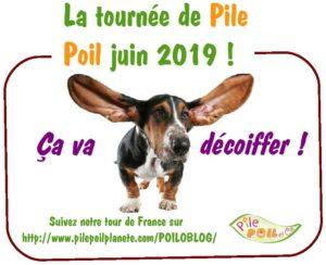 MONTAGE CHIEN TOURNEE JUIN 2019-1